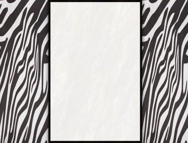 ZebraStripescopy-1