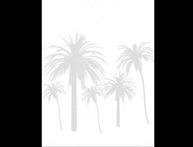 palmtreesilouettecopy