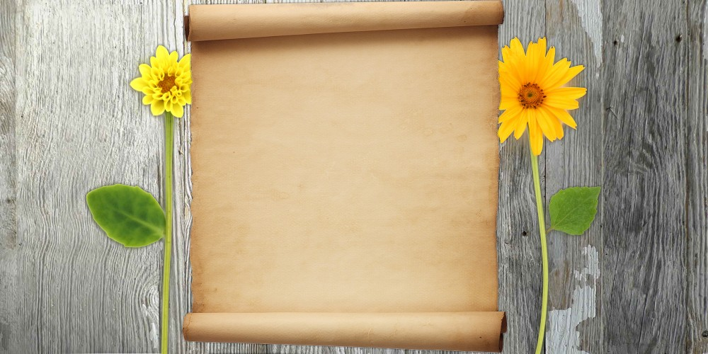 Scroll Blog | Flower Blog | The Cutest Blog On The Block