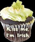 free kiss me i'm irish blog button