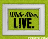 while alive live_blog button